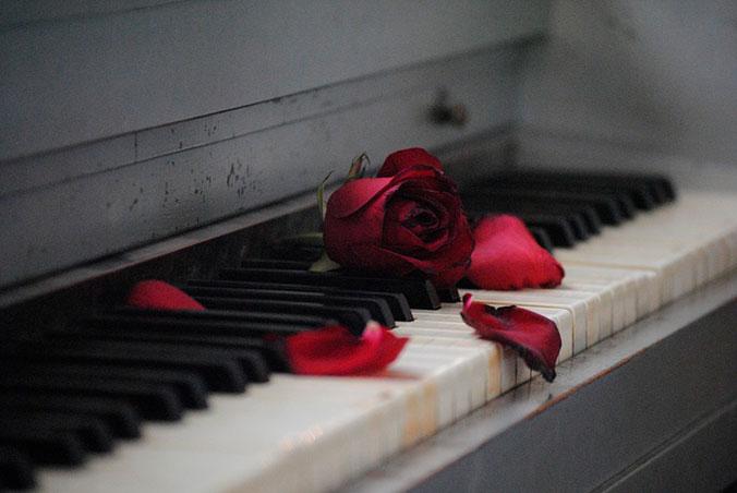 Nunca es tarde para que te amen - Desamor flor sobre piano