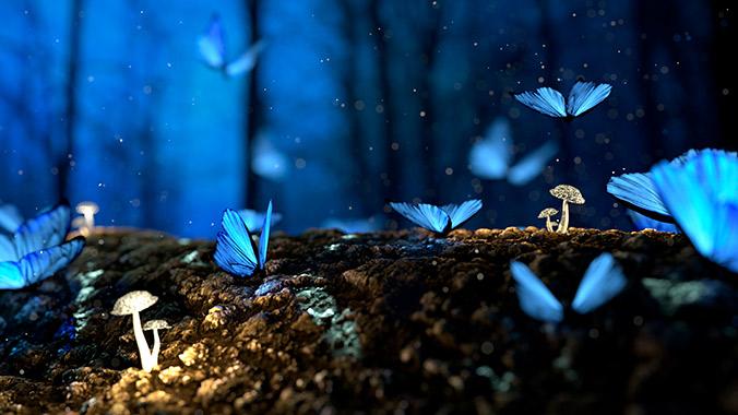Inspiración - Mariposas azules volando en el bosque