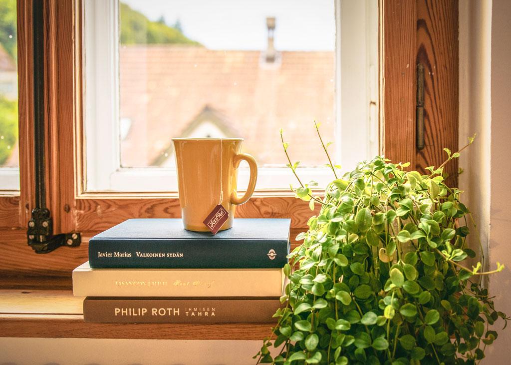 Libros cursos en la ventana
